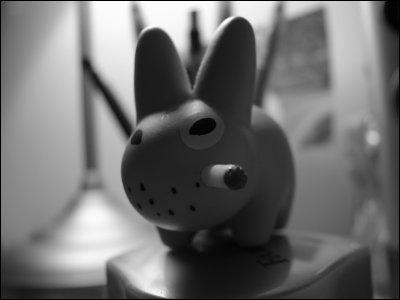 joe_rabbit